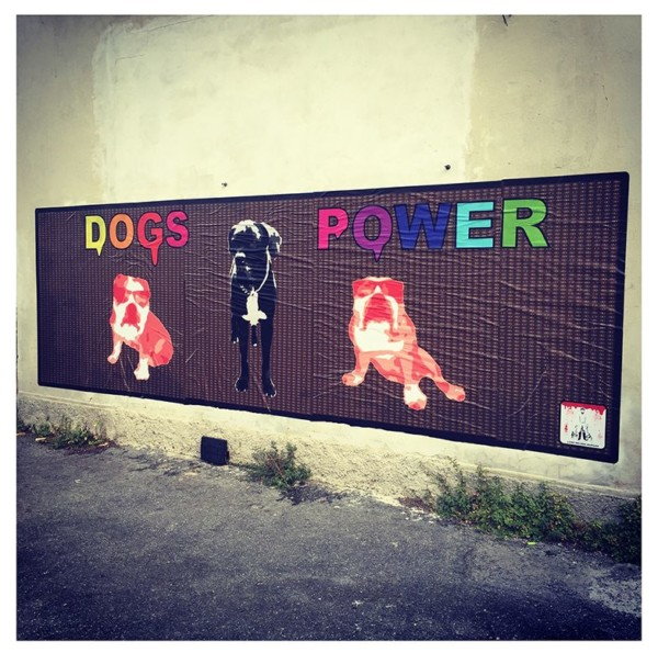 Dogs power